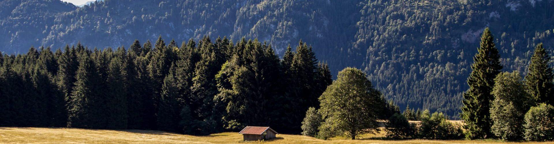 ferienhaus-heuser-3408
